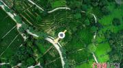 """森林资源与旅游发展融合 """"世界客都""""走出生态富民新路"""