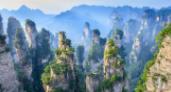 森林旅游发展潜力巨大
