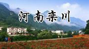 河南栾川:发展高质量森林康养产业
