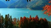 怎样创意打造优美的林业景观?
